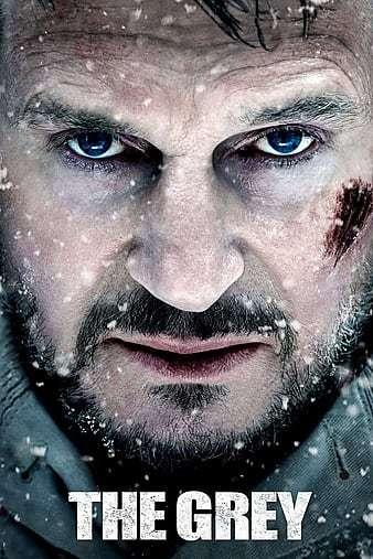 Gri Kurt İndir The Grey 720p-1080p Türkçe Dublaj TR-ENG 2011 Film